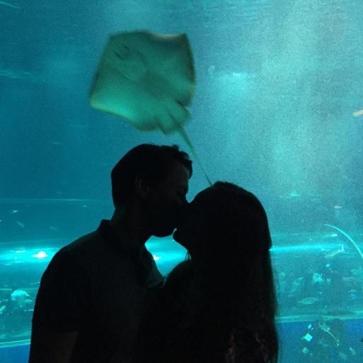 aquario_34