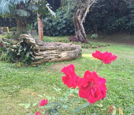 parque_natural_petropolis_1
