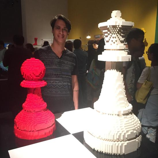 the_art_of_the_brick_12