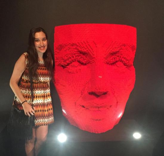 the_art_of_the_brick_30