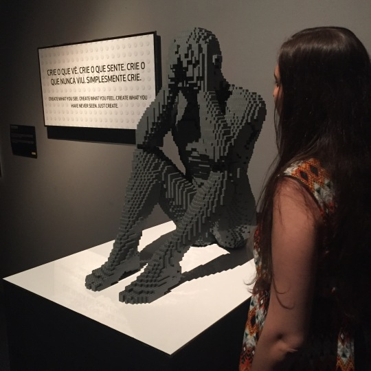 the_art_of_the_brick_45